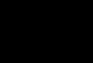 Zwart logo